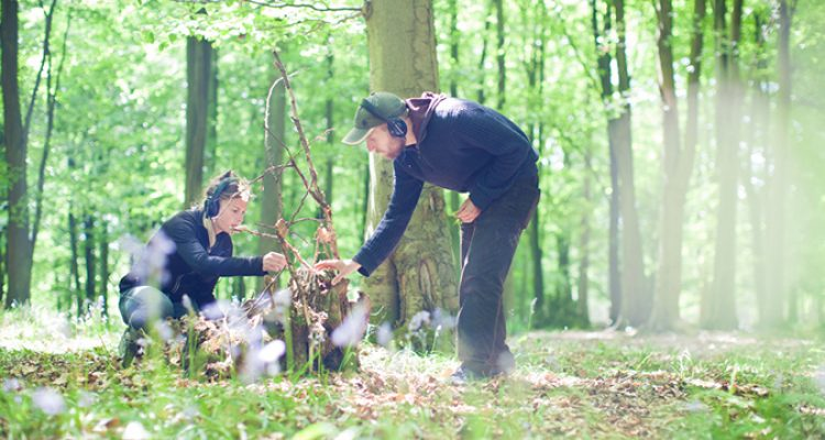 You're invitation to a nature trail, a treasure hunt, a walking party & immersive theatre